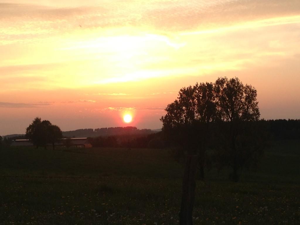 Im letzten Licht der Sonne