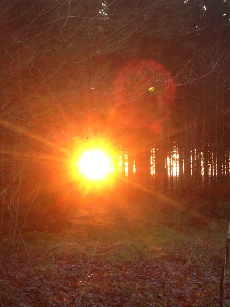 Auch im Winter gibt es wunderschöne Sonnenuntergänge zu bestaunen
